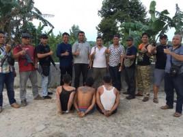 2 Dari 5 Komplotan Spesialis Pencuri Sarang Burung Walet jadi Buronan Petugas