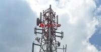 2 Pemilik Menara Telekomunikasi Tunggak Retribusi