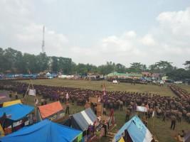 2 Ribu Peserta Ikuti Peringatan Hari Jadi Pramuka Ke-57 di Tubaba