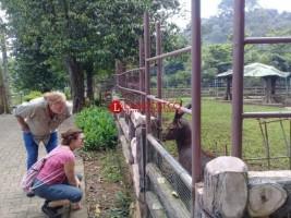 22 Dokter Hewan Indonesia Berlatih Pelihara Satwa