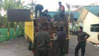 30 Balok Kayu Sonokeling Hasil Pembalakan Liar di Tahura Diamankan