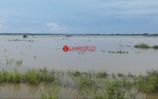 95 Hektare Lahan Terendam Banjir, Petani Bandanhurip Tunda Musim Tanam