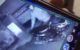 Aksi Pencurian Dua Motor di Jalan Kelud Terekam CCTV