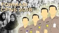 Alokasi Formasi CPNS di Lamtim Sejumlah 449