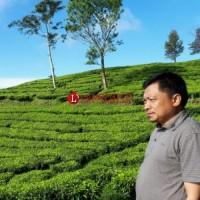 Ancaman AS Dimungkinkan Berdampak Pada Komoditas Lampung