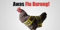 Ancaman Flu Burung