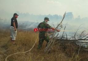 Anggota TNI dan Polres Mesuji Berjibaku Padamkan Api di Perbatasan