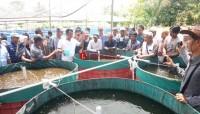 APCI Beri Pelatihan Budi Daya Ikan Tawar Metode Bioflok