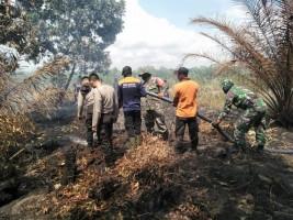 Api yang Membakar Lahan Mesuji Mulai Padam