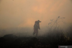 Asap Kebakaran Hutan di Sumsel Capai Riau dan Jambi