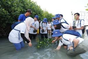 Astra Gelar Aksi Hijau di Pulau Pramuka