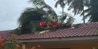 Atap SDN Kebuayan Rusak Tertimpa Pohon saat Angin Kencang