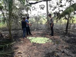 Bakar Sampah di Kebun, Warga Pekon Pujiharjo Tewas Terbakar