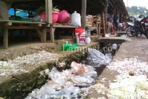 Bappeda Catat 18 Kelurahan di Kota Tapis Tergolong Kumuh