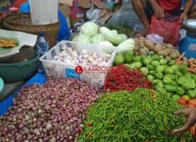 Harga Bawang Merah di Lampung Selatan Terjun Bebas