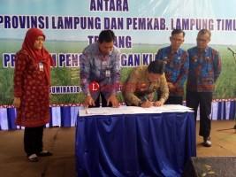BI Perwakilan Lampung Jalin Kerja Sama Program Pengembangan Klaster Padi