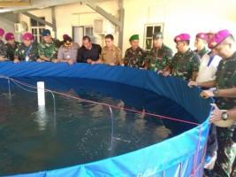 Brigif 4 Marinir Piabung Gelar Pelatihan Budidaya Udang Vaname