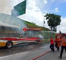 Bus DAMRI Bawa Puluhan Penumpang Terbakar di Jalinsum