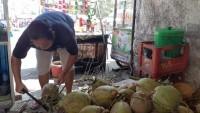 Cuaca Panas, Penjualan Es Kelapa Muda Laris Manis