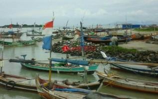 Cuaca Tak Menentu, Hasil Tangkapan Nelayan Turun Drastis
