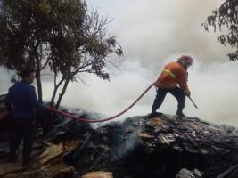 Dalam Sepekan, 7 Kebakaran Terjadi di Lampung Selatan