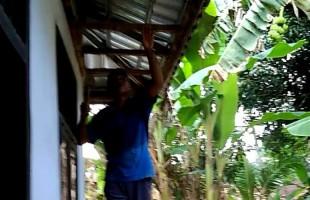 Desa Kemalo Abung Anggarkan Rp13 Juta untuk Rehab Poskesdes