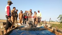 Desa Pulautengah Dorong Perekonomian Masyarakat