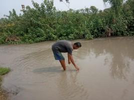 Diduga Dampak Penambangan Pasir di Hulu, Air Way Waya di Banyumas Jadi Keruh
