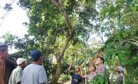 Diduga Frustasi Penyakit Tak Sembuh, Pria Ini Tewas Gantung Diri di Pohon Rambutan