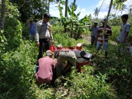 Diduga Jatuh dari Pohon Kelapa, Warga Pagelaran Tewas