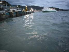 Dilanda Tsunami, Pelayanan Angkutan Kapal di Pelabuhan Bakauheni Lancar