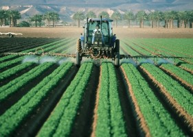 Dinas TPH Lampung Sosialisasikan Program Pembangunan Bidang Pertanian