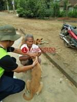 Distan Lampura Gelar Vaksinasi Anti Rabies Di Desa Sumber Arum