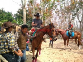 Ditpolair Polda Lampung Perkenalkan Olahraga Berkuda pada Anggota dan Keluarga