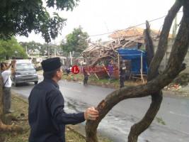 Dua Hari, Empat Pohon Tumbang di Bandar Lampung