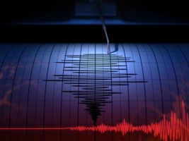 Gempa Guncang Manokwari dan Maluku