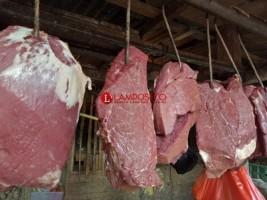 Harga Daging Sapi di Bandar Lampung Capai Rp130 per Kilo