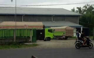 Harga Jagung Tembus Rp5.600 Per kg