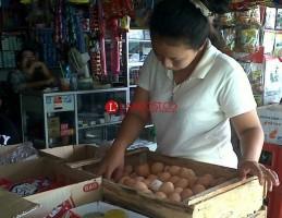 Harga Telur Ayam dan Terigu di Lamsel Mulai Naik