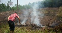 Hindari Kebakaran Lahan, Petani Diimbau Tak Lakukan Pembersihan Lahan dengan Metode Pembakaran