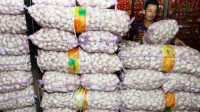 Importir Diminta Datangkan Bawang Putih Sebelum Ramadan