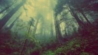 Indonesia-Inggris Sepakati Kerja Sama Bidang Lingkungan