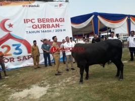 IPC Sebar 3.500 Paket Daging Kurban