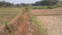 Irigasi Kering, Petani Lampura Terpaksa Tunda Tanam