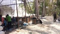 Izin Lingkungan Ditolak, Usaha Pembuatan Arang Harus Ditutup
