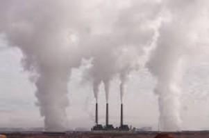 Jelaga Partikel Polusi Melintasi Plasenta