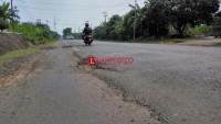 Jelang Mudik Lebaran, Jalur Utama Penghubung Jalinsum-Jalinpantim di Lamsel Masih Rusak