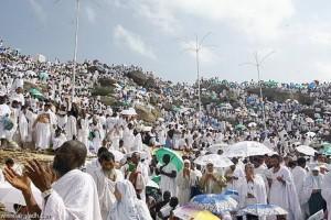 Jelang Wukuf, Jemaah Terus Bergerak ke Arafah