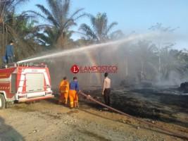 Kebakaran di Pabrik Sabut Kelapa, Kerugian Capai Rp250 Juta