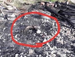 Kebakaran di Rawapitu Tewaskan Anak Pemilik Rumah